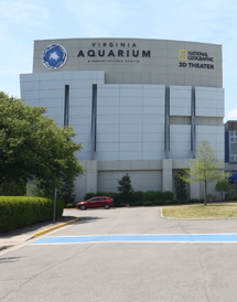 Aquarium Admission