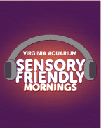 Sensory Friendly Morning