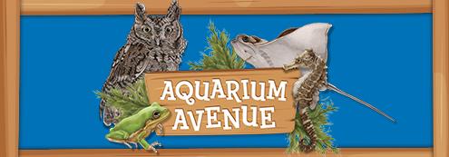 Aquarium Avenue
