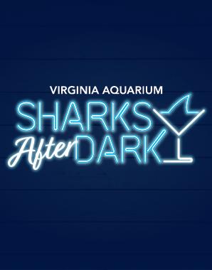Sharks After Dark